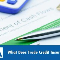 What-Does-Trade-Credit-Insurance-Cost